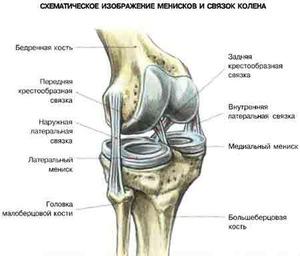 a térdízület fájdalomcsillapítói
