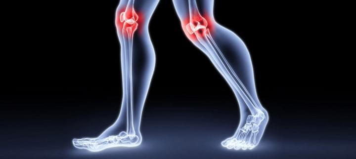 ízületi csontok mechanikai károsodásának vizsgálata)