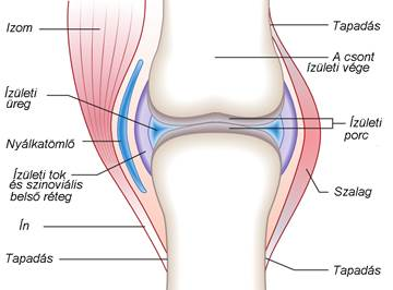 az artrózis kiegészítő kezelése