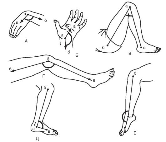 ízületi gyulladás esetén a térdízület amplitúdójának mérése