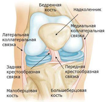 infrapatellaris bursitis a térdízület kezelésében)
