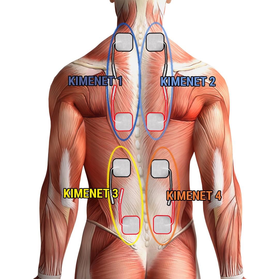 miért fordulnak elő ízületi fájdalmak állandó fájdalom a kéz ízületeiben