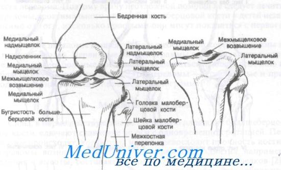 térdízület kezelésének ragasztása)