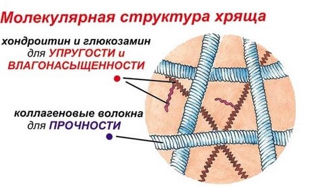 intramuszkuláris glükózamin készítmények