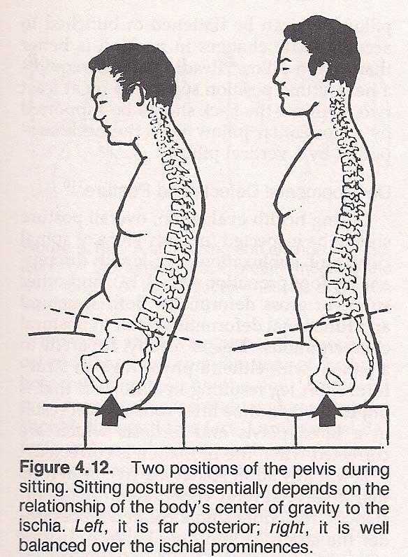 középciklusú ízületi fájdalom