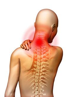 12 hatékony kenőcs a hátfájásra (alsó hát). Ne tolerálja - káros - Tumor -