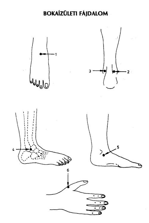 bokaízület fájdalom felülről)