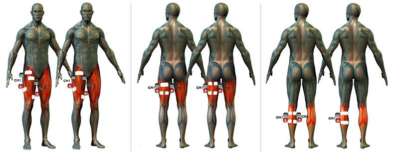 izom- és ízületi fájdalomcsíra ízületi fájdalom a karban