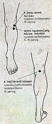 hörgők és ízületek kezelése)