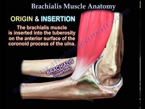 artrózis urumqi kezelése