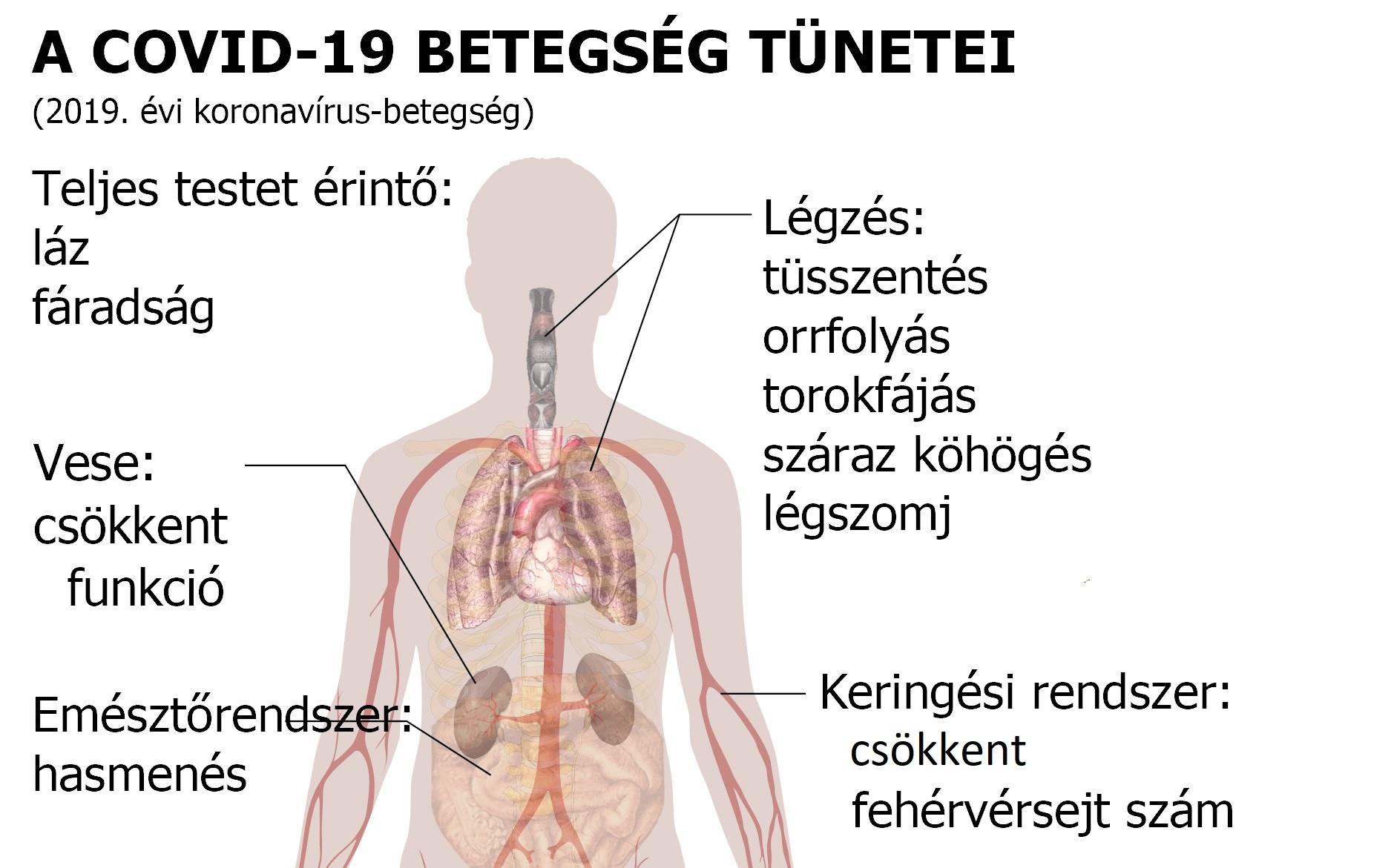 köhögés tüneteinek kezelése)