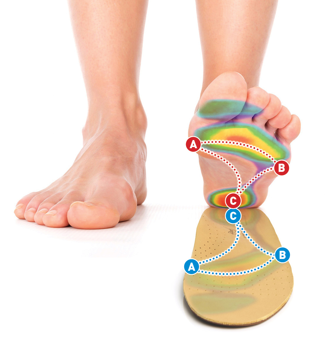 a láb fáj a kis ízületekről
