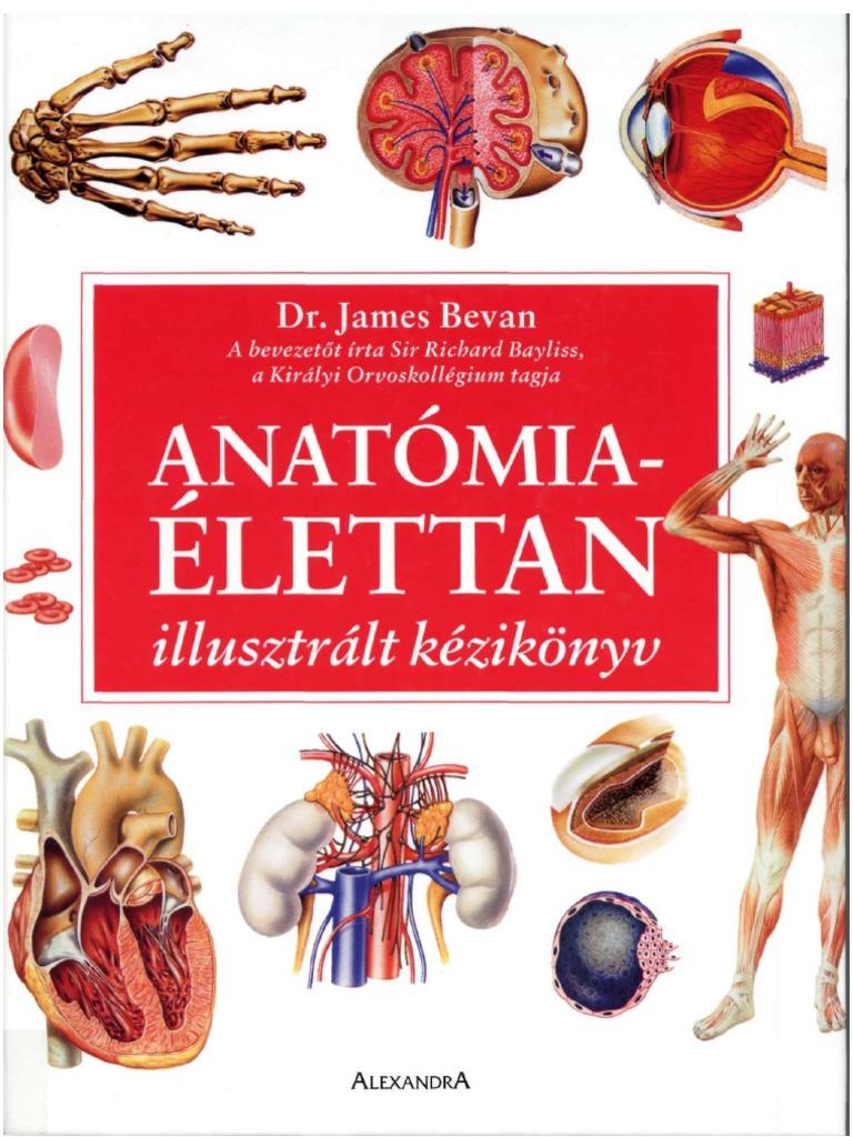 Betegségekről   Dr. Gergely Zsolt
