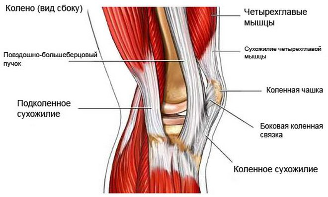 térdízületi fájdalom meghosszabbítás során
