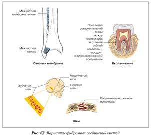 adnak-e csoportot ízületi ízületi gyulladáshoz térdízületi nem-gyógyszeres kezelés