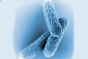 enyhe csípő dysplasia kezelés ásványvíz ízületi kezelésre