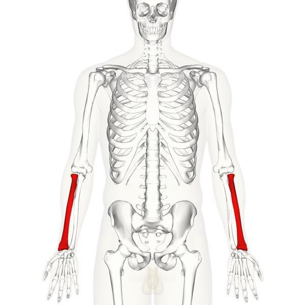 a vállízület blokkjának osteochondrosis