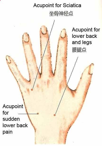 arthrosis kezelés altajban)