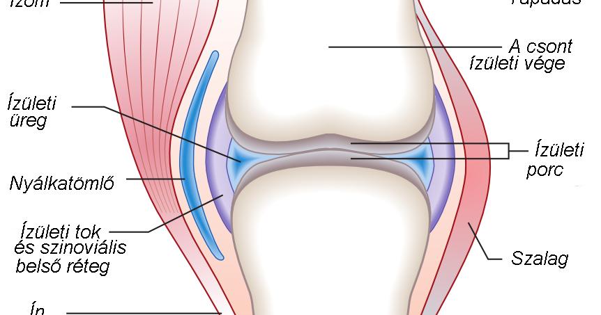 az 1. fokú vállízület artrózisának kezelése