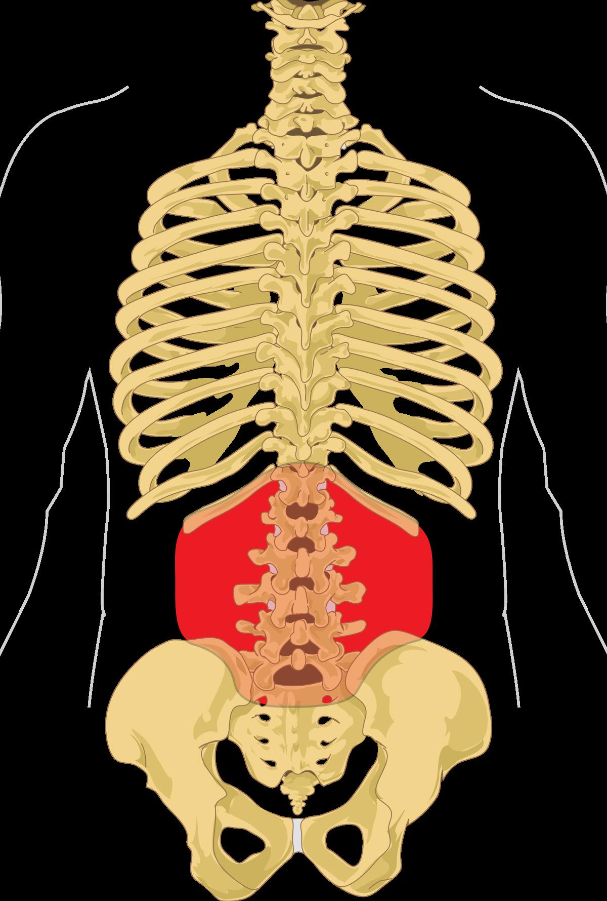 minden ízület és gerinc fáj, mi az)