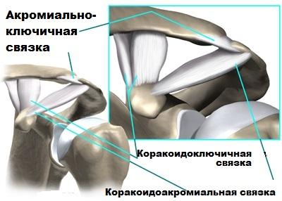 clavicularis acromialis artrózis kezelése)
