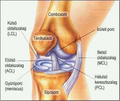 Csontízületi gyulladás | Blausen Medical