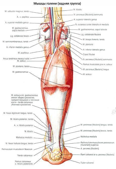 kortikoszteroidok ízületi kezelésre kenőcs az ízületek gyulladásaiért