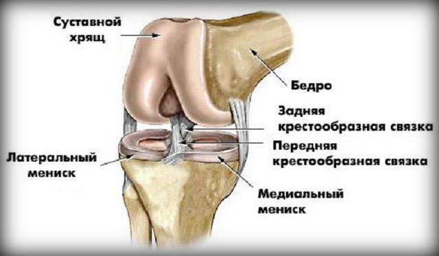 általános artróziskezelés