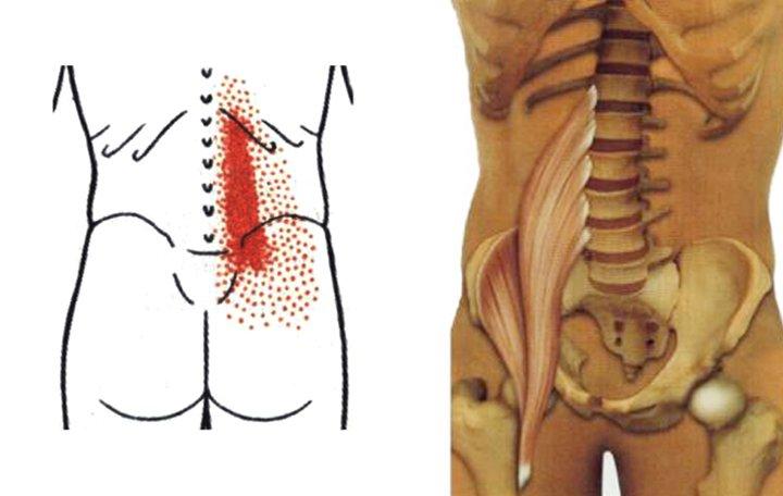 értágító gyógyszerek a nyaki gerinc osteokondrozisához