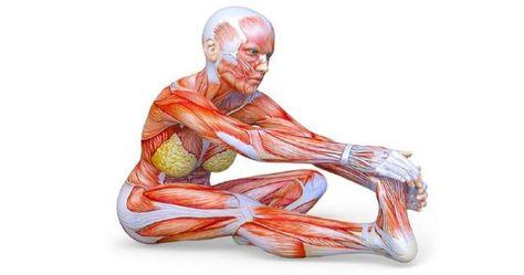 a térdízületek izmai fájnak fájdalom a boka törése után