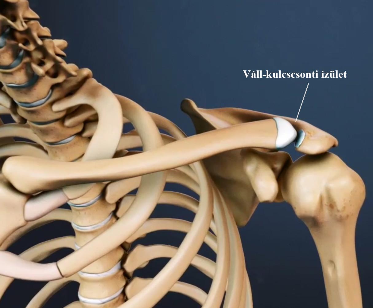 A lábfájdalom oka sokszor a gerincben keresendő -Fájdalomközpont