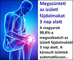 térd sérülések áttekintése