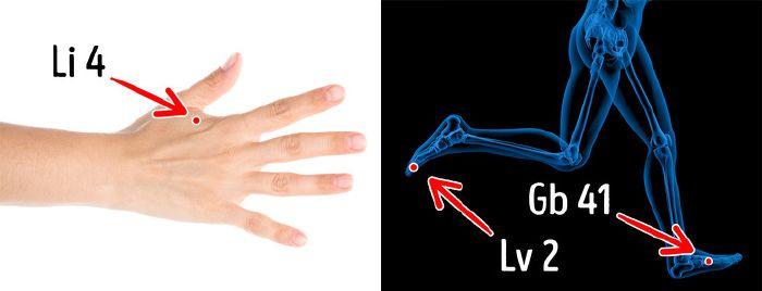 hatékony tinktúrák ízületi fájdalmak kezelésére
