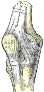 ujjpercek fájdalma hogyan lehet megszabadulni a csípőízület artrózisától