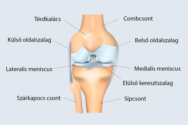 térdízületi tünetek kezelése meniszkusz