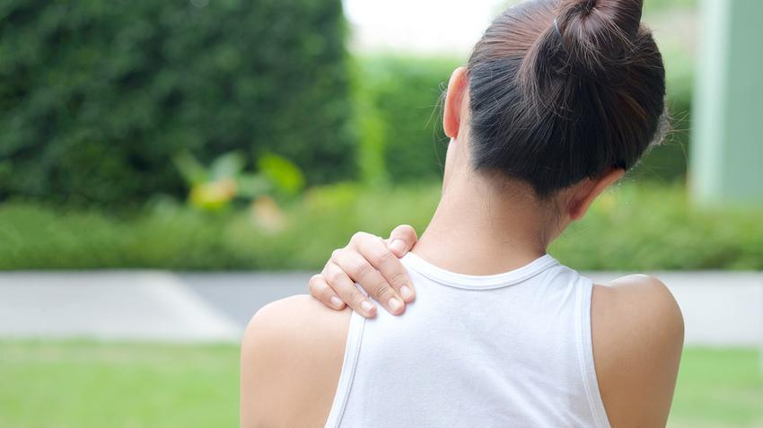 ízületi fájdalomcsillapító gyógynövények
