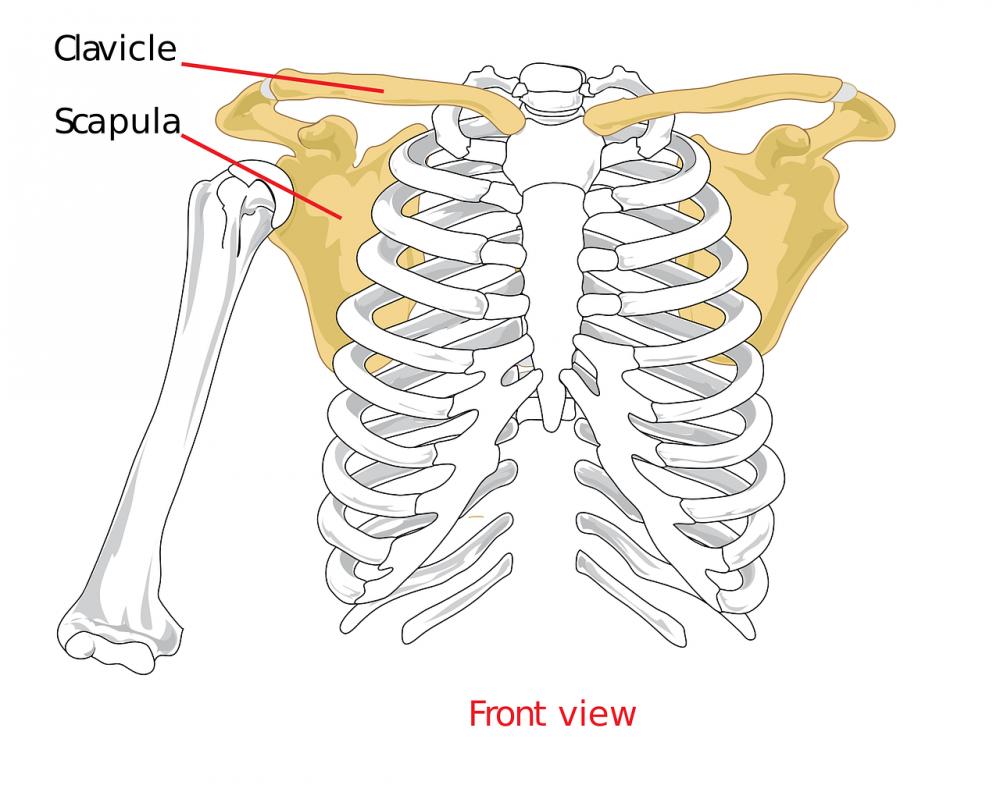 hogyan lehet érzésteleníteni a csípőízület fájdalmát