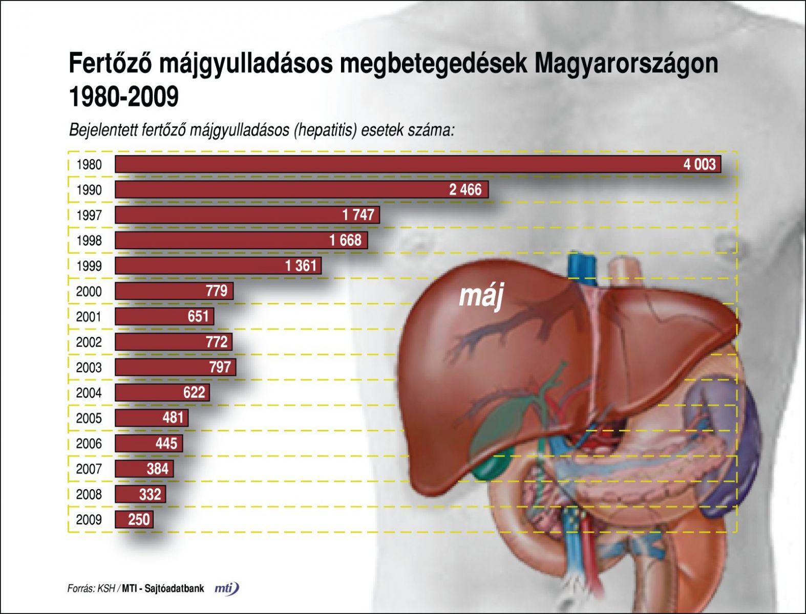 Májbetegségek