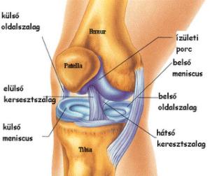 torna lábízületi gyulladás kezelésére