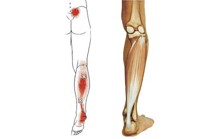 hogyan lehet kezelni az alsó lábszár ízületét)