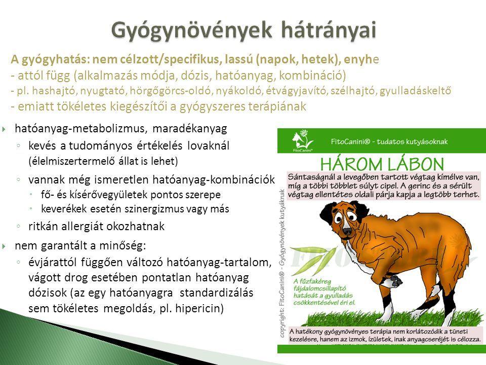 Ló kenőcs balzsam és gél segíti az ízületeket - a kábítószerek országos besorolása
