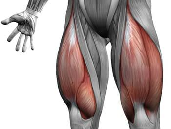 hogyan erősíthető meg a csípőízület kötőelemei sérülés után