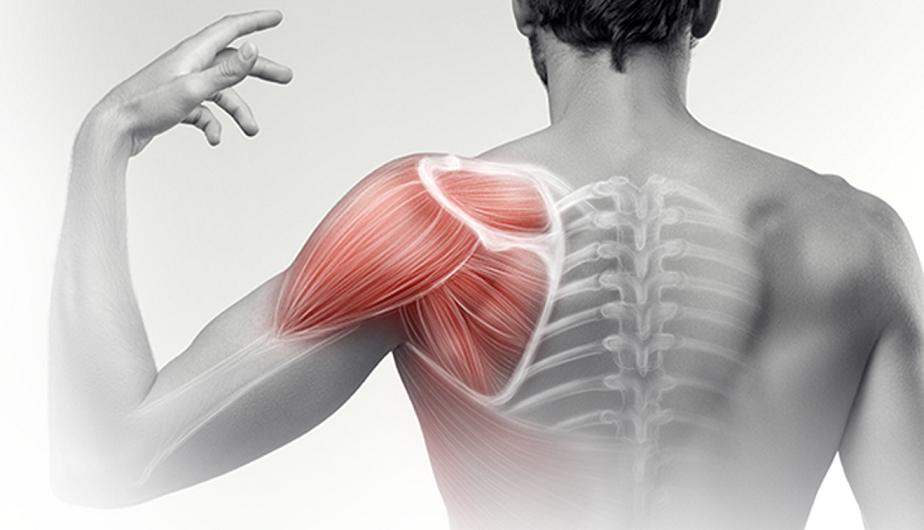 fizikai aktivitással, a vállízület fájdalmával